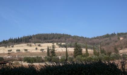 Les collines de San'Ambrogio